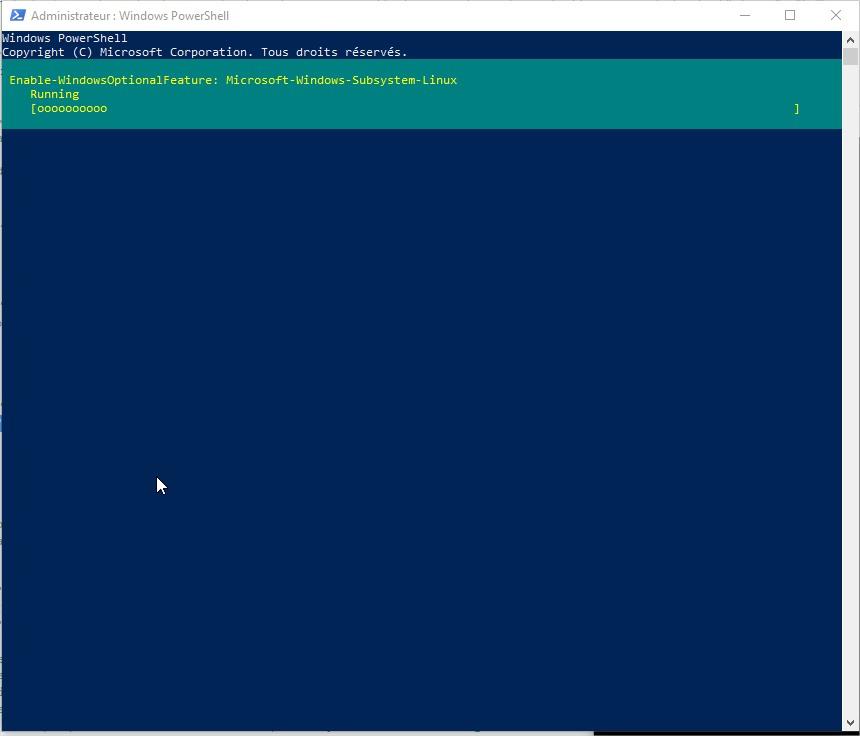 Activer le sous système Linux pour Windows